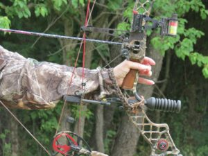 Top 4 Reasons You Should Be Shooting Does in Early Archery Season