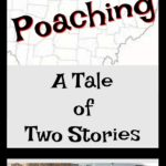 Ohio Poaching: A Tale of Two Stories